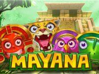 Mucha Mayana